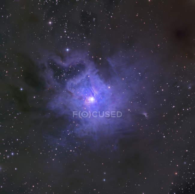 Iris Nebula in constellation Cepheus — Stock Photo