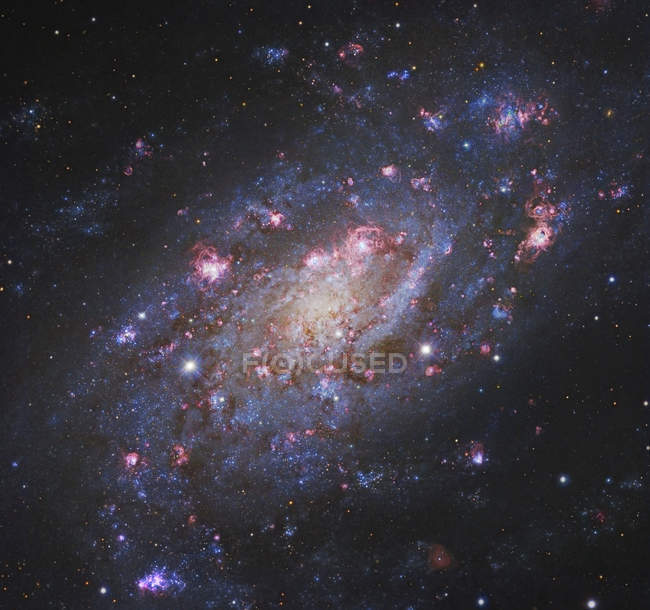 Galáxia espiral na constelação da girafa — Fotografia de Stock