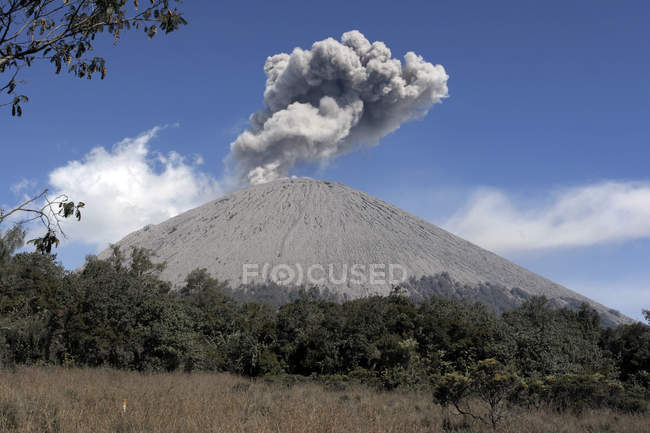 Semeru eruption on Java Island — Stock Photo
