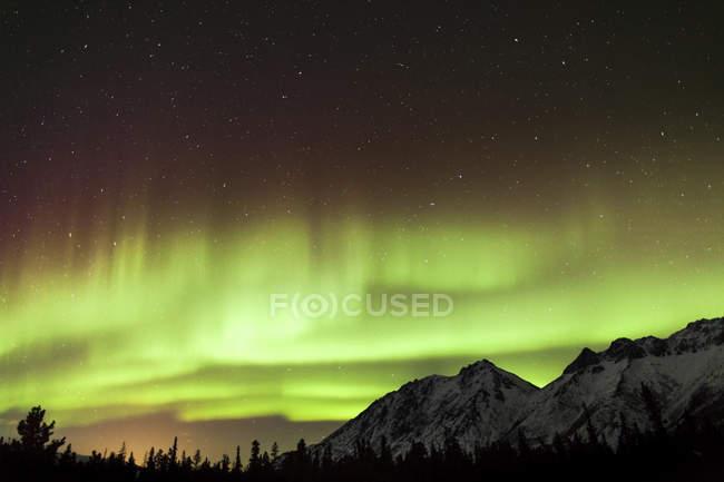 Aurora borealis over mountains and forest — Stock Photo