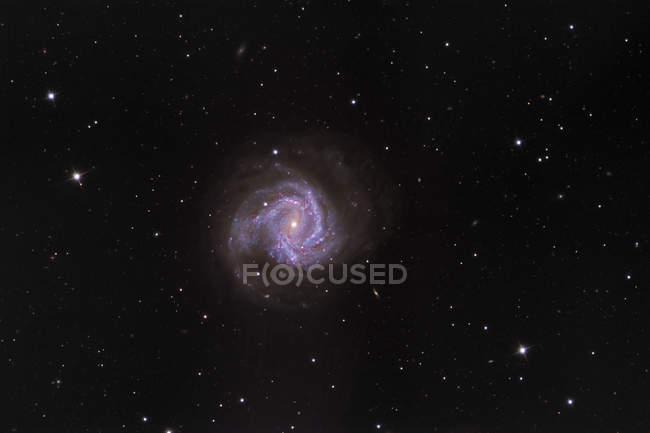 Paisaje estelar con Messier 61 Espiral Galaxy - foto de stock