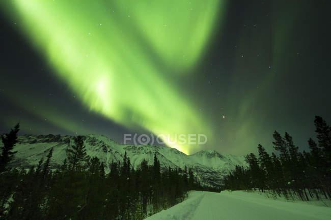 Luces boreales sobre Annie Lake Road, Territorio del Yukón, Canadá - foto de stock