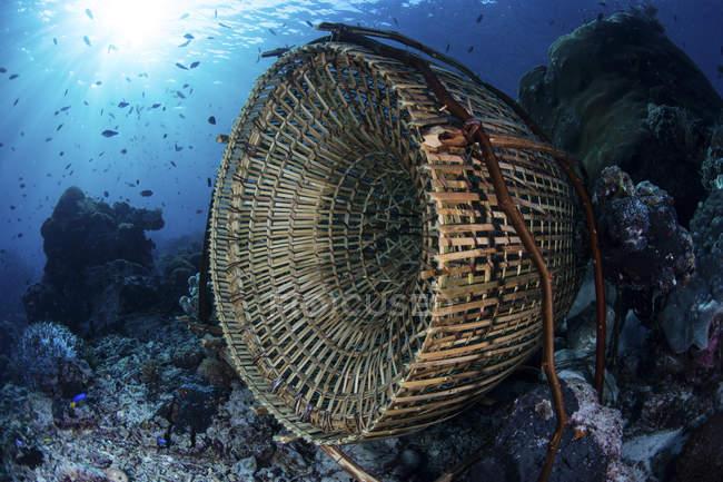 Armadilha de peixe tradicional feita de bambu — Fotografia de Stock