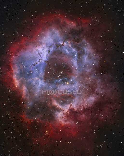 Rosette emission nebula in Monoceros constellation — Stock Photo