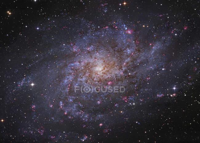 Spiral galaxy in Triangulum constellation — Stock Photo