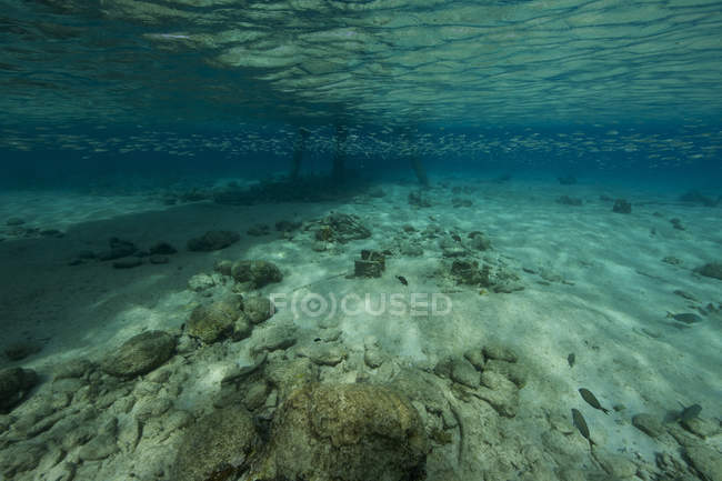 Shallow waters under Salt Pier — Stock Photo