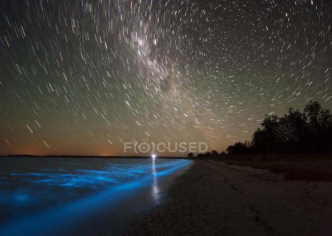 Senderos de estrellas y bioluminiscencia en el lago Gippsland - foto de stock