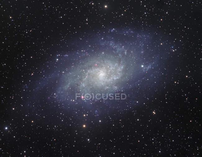 Starscape with Triangulum spiral galaxy — Stock Photo