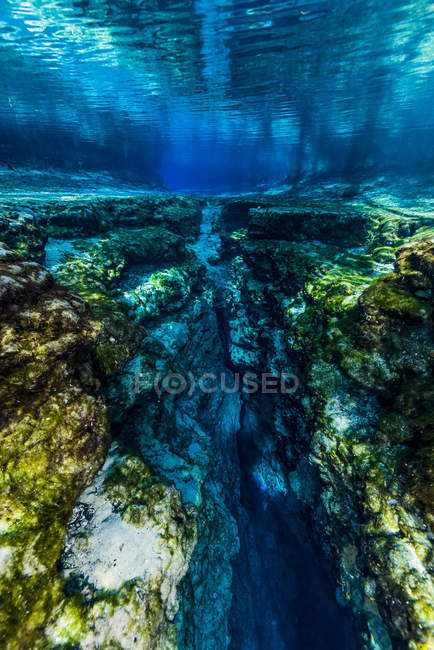 Underwater crevice in Ginnie Springs — Stock Photo