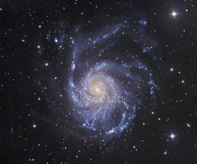 Starscape with Pinwheel Galaxy in Ursa Major — Stock Photo