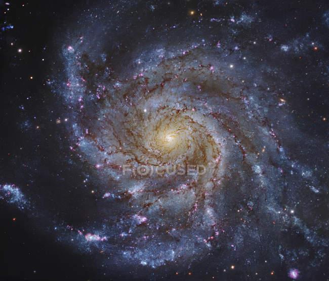 Pinwheel Galaxy in Ursa Major — Stock Photo