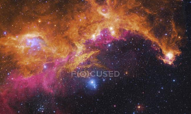 Starscape with Seagull nebula — Stock Photo