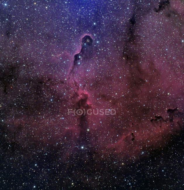 Starscape with Elephant trunk nebula — Stock Photo