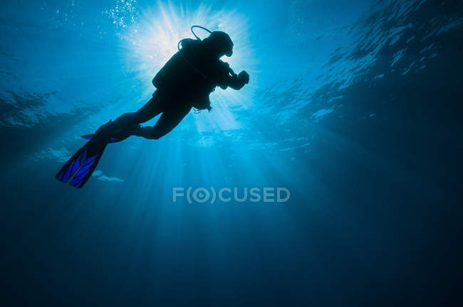 Diver swimming under sunlight — Stock Photo