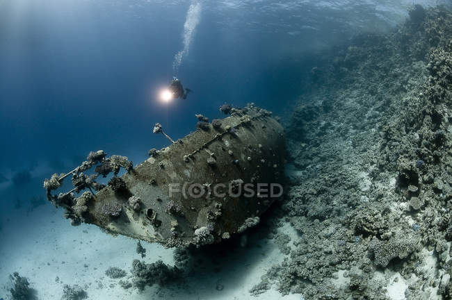 Diver observing wreck of a sailing boat on the reef, Red Sea, Egypt — Stock Photo