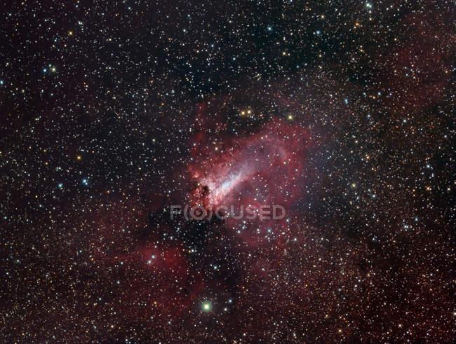 Swan Nebula Messier 17 in constellation Sagittarius — Stock Photo