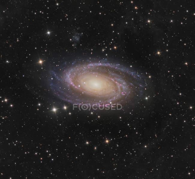 Messier 81 спиральная галактика в созвездии Большая Медведица в высоком разрешении — стоковое фото