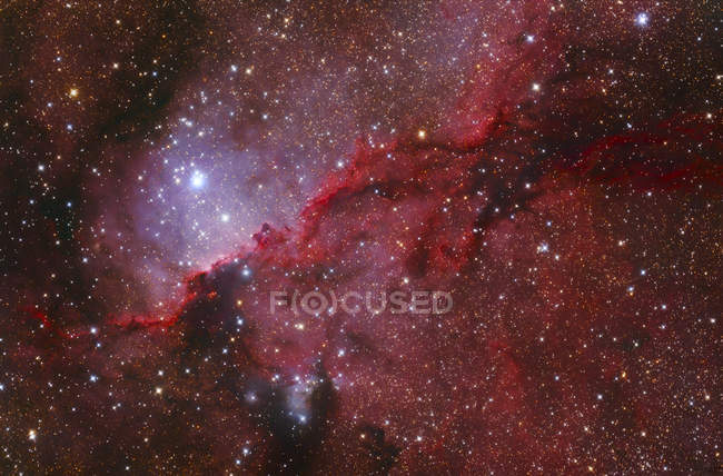 Starforming emission nebula NGC 6188 in constellation Ara in high resolution - foto de stock