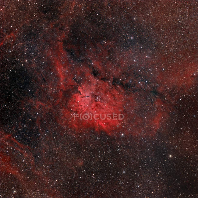 Emission nebula NGC 6820 in true colors in high resolution - foto de stock