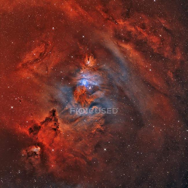 Рождественская елка туманность NGC 2264 с туманность конуса и Фокс меха туманность в высоком разрешении — стоковое фото
