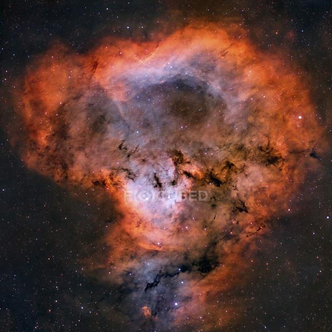 NGC 7822 Эмиссионная туманность в созвездии Цефей — стоковое фото