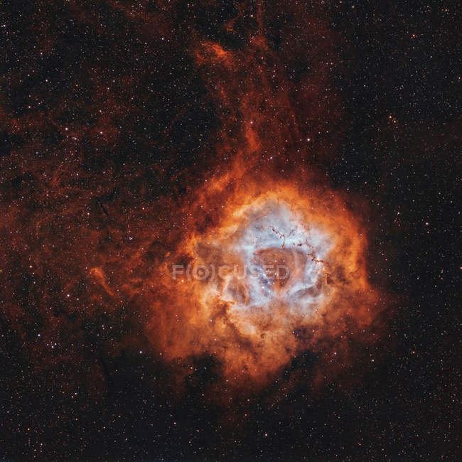 NGC 2237 Rosette Nebula with open cluster NGC 2244 in high resolution - foto de stock