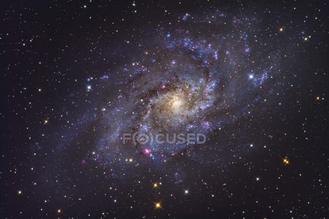 Triangulum Galaxy NGC 598 in constellation Triangulum — Stock Photo