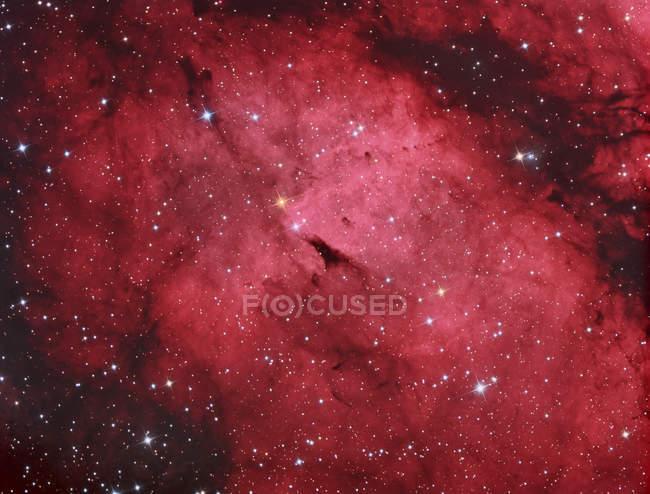 Sadr região na constelação Cygnus em alta resolução — Fotografia de Stock