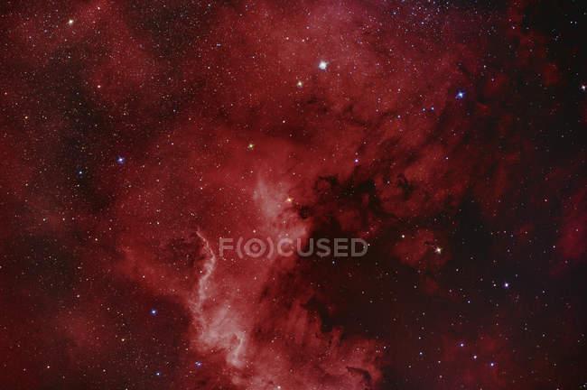 Туманность Северная Америка NGC 7000 в истинных цветах в высоком разрешении — стоковое фото