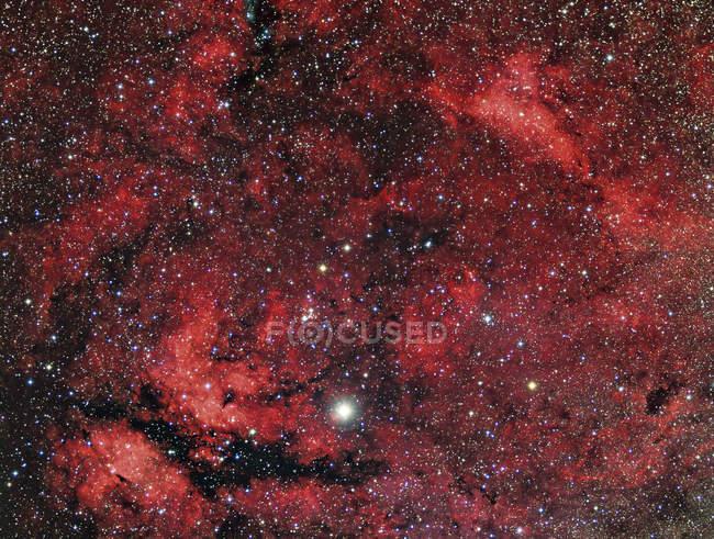 Sadr region in constellation Cygnus in high resolution — Stock Photo