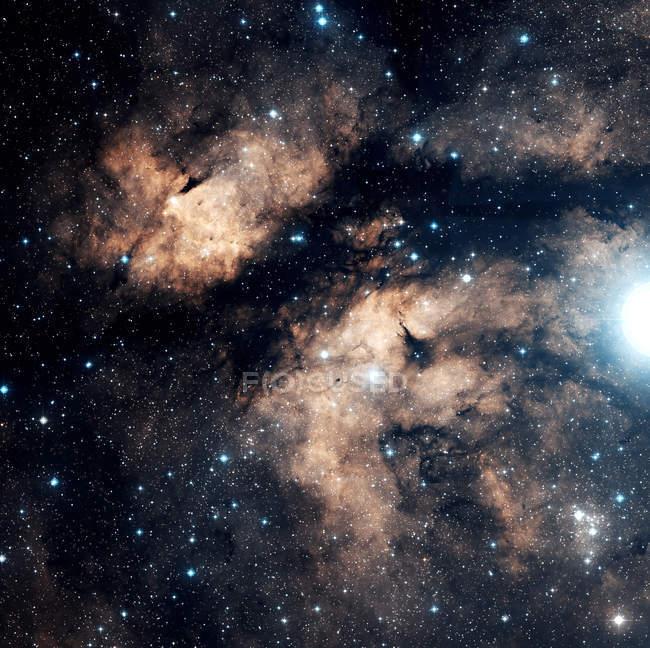 Nebulosa a farfalla DWB 67, 72, 76, 81 in costellazione Cygnus — Foto stock