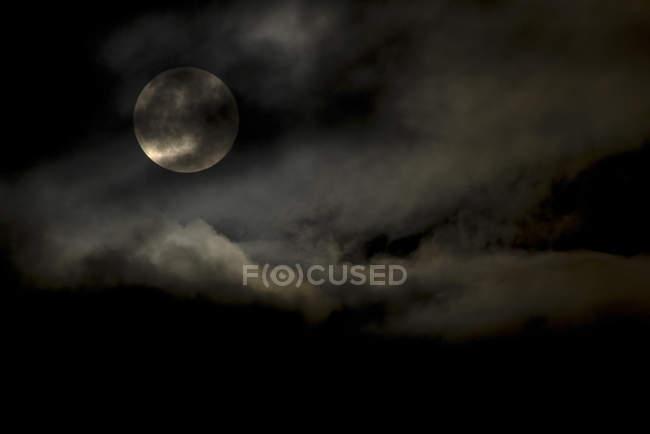 Cosecha la Luna a través de las nubes, New Aiyansh, Columbia Británica, Canadá - foto de stock