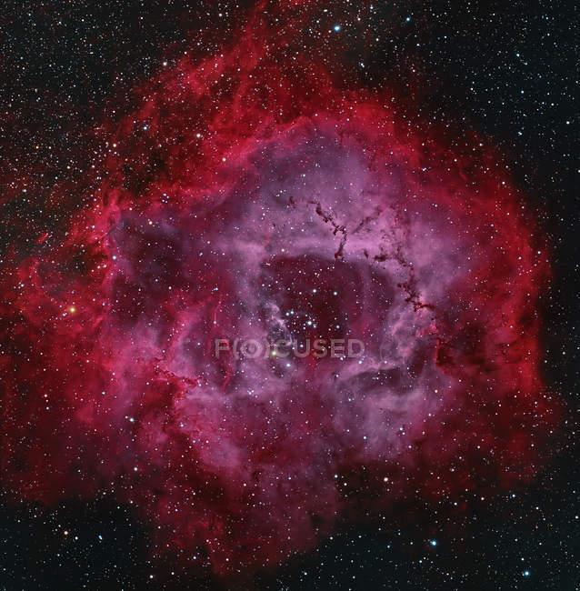 Nebulosa Rosetta in veri colori in alta risoluzione — Foto stock