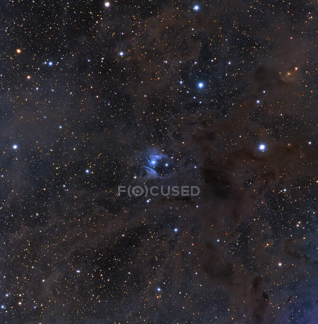 Dust and nebulosity in constellation Aries — Stock Photo