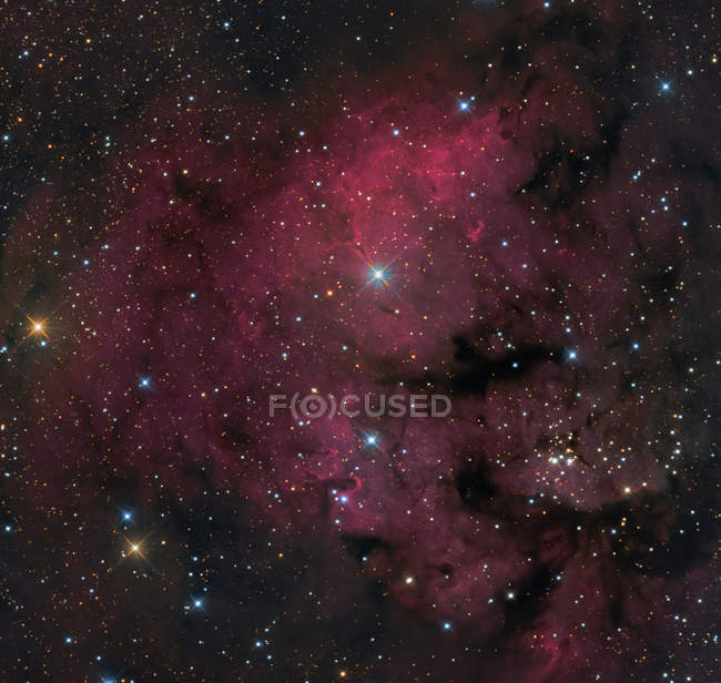 NGC 7822  star forming complex in constellation of Cepheus — Stock Photo