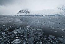 Grasa, hielo, glaciares y montañas - foto de stock