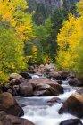 Захід вилка річки Карсон є живим зі осінь колір за межами Markleeville, Каліфорнія — стокове фото