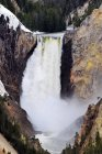 Lower Yellowstone Falls at peak flow in the spring in Yellowstone National Park, Wyoming — Stock Photo