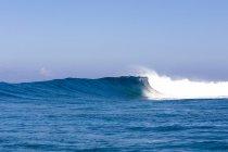 Brise-lames set grand col Wilkes dans Namotu, Fidji — Photo de stock