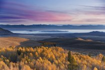 Tremule gialle di autunno e Mono Lake e l'alba in California — Foto stock
