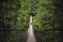 Touristen auf Lynn Canyon Suspension Bridge in der Nähe von Vancouver, Kanada — Stockfoto