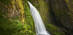 Lush vegetation surrounds Wahkeena Falls in the Columbia River Gorge, Oregon — Stock Photo