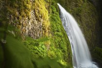 Una vegetazione lussureggiante circonda Wahkeena Falls in Columbia River Gorge, Oregon — Foto stock