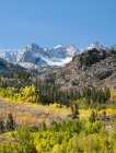 Кольору осені і свіжого снігу на Сьєрра Crest, у Сьєрра, єпископ, Каліфорнія — стокове фото