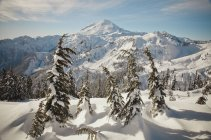 Paysage d'hiver du Mont Baker au cours de l'hiver à Washington — Photo de stock