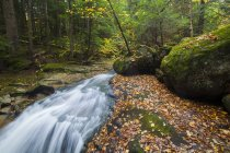 Gordon Falls sul ruscello di Snyder in autunno, Fallsway Trail, White Mountain National Forest, New Hampshire — Foto stock