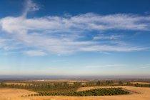 Vue panoramique du paysage dans la vallée de Fresno — Photo de stock