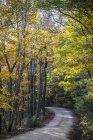 Живописный вид на извилистые дороги под красочные деревьев в Арканзасе — стоковое фото