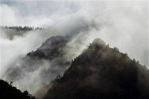 Nubi di tempesta cominciano a cancellare dopo una leggera nevicata nel Parco nazionale di Kings Canyon, California — Foto stock