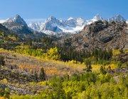 Fall Aspen below the Sierra crest, Bishop area, California — Stock Photo